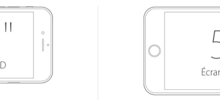 iPhone 6 vs iPhone 6 Plus taille ecran