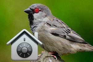 Supprimer le malware Silver Sparrow sur Mac (4 solutions)
