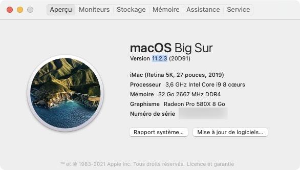 macOS Big Sur 11.2.3 a propos de ce mac